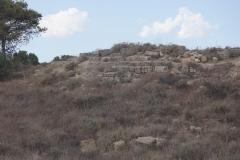 Salamis Roman City